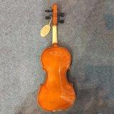 Jeu de base Bunnel violon Outfit taille 4/4 (plein)
