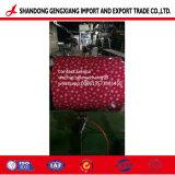 색깔은 중국에 있는 강철 코일 PPGI PPGL 스타킹 제조자를 입혔다