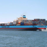 Agente profissional de logística de transporte marítimo da China para Santos / San Vicente / Sepetiba / Sepetiba / Suape / Ushuaia