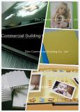Профессиональное изготовление рекламируя доску пены PVC