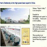 Machine de découpage chaude de vente et de laser de fibre de la qualité 500W