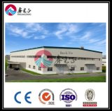 Prefabricated Steel Structure Warehouse (BYSS-161)