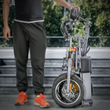 Neues Samsung-Lithium 48V 250W des Entwurfs-2017 elektrisches Fahrrad faltend