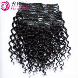 Hoogste Kwaliteit 100% Klem van het Menselijke Haar van de Uitbreiding van het Haar de Maleise Maagdelijke in de Diepe Golf van de Producten van het Haar