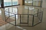 DIY kleine Hundehaustier-Spiel-Feder