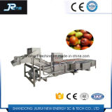 果物と野菜のクリーニング機械魚の洗濯機