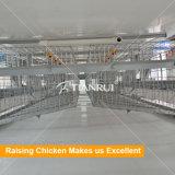 鋼鉄によって電流を通されるHのタイプ自動鶏の卵の置くケージ