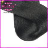 Dobro por atacado Weave reto humano desenhado do cabelo humano de Brazillian da alta qualidade muito grossa