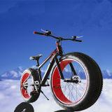 중국 고품질 Hotsale OEM 뚱뚱한 타이어 자전거 지방질 자전거