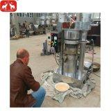 Avocado, macchina oleoidraulica verde oliva 50-100kg/H della pressa di olio