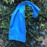 체조 옥외 수건이 파란 색깔에 의하여 경량 Microfiber