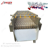 Máquina de lavar automática da morango da máquina da castanha
