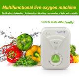 Gerador de ozônio grossista usar na cozinha para purificador de frutos e produtos hortícolas