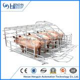 Les équipements agricoles Caisses de gestation de porc en acier inoxydable