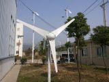 600W horizontaal van het Systeem van de Turbogenerator van de Wind van het Net