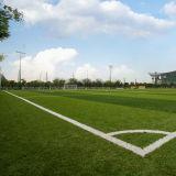 Het veelkleurige Synthetische Kunstmatige Gras van het Voetbal (fabrikant Wuxi)