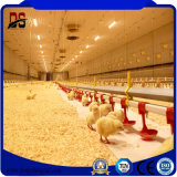 닭 농장을%s 전 설계된 새로운 건축 물자