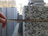 Lastra bianca del granito di bianco cinese del granito G439