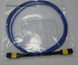 Cavo ottico della fibra di MPO/APC-MPO/APC