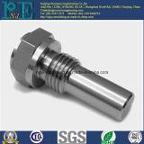 Het Staal CNC die van de precisie Bouten met Schroefdraad machinaal bewerken