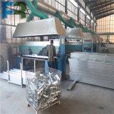 Plancia d'acciaio galvanizzata Hot-DIP dell'armatura 250*50 per costruzione