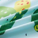 Insieme poco costoso all'ingrosso del coperchio del Duvet di prezzi della Cina