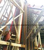 Terminar la tarjeta de partícula que hace la maquinaria de la madera o del bagazo