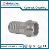Estremità composita del maschio dei connettori del tubo flessibile dell'acciaio inossidabile
