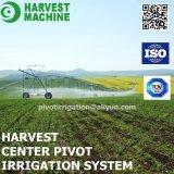 Irrigation agricole de roue d'eau de bobine de boyau
