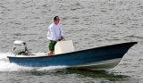 Aqualand 23feet 7m Fiberglas-Wasser-Taxi-Motor/Passagier-Fähre/Fischerboot (230c)