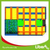 Plus de 300 mètres carrés de meilleure qualité Kids Trampoline avec la norme ASTM