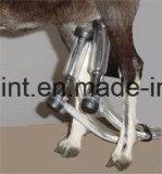 単一電気ピストン-ヤギの搾り出す機械