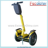 Cost-Efficient Two-Wheeled Self-Balancing Scooter eléctrico de la publicidad