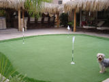 SGS Long Life-Time Anti-UV Artificial Lawn Golf Sintético Turf