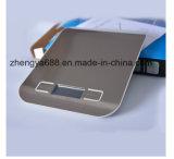 형식 디자인 LCD 디스플레이 스테인리스 5kg 1g 부엌 가늠자