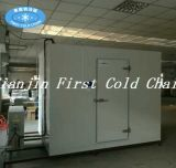 La qualité de la vente chaude Hight chambre froide / entreposage à froid en Chine