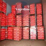 Comida de grandes dimensões personalizadas a armazenagem a frio para a Logística e Distribuição