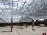 鉄骨構造の倉庫か研修会628のために広く利用された波形の屋根瓦