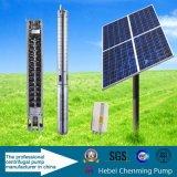 Pompe submersible solaire d'Irriagtion d'acier inoxydable de C.C 40W
