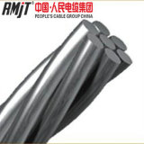 熱いすくいの電流を通された鋼線の/Guyワイヤー