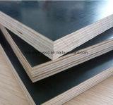 La película del grado de la primera clase hizo frente a la madera contrachapada para Shuttering de la construcción