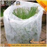 Saco de planta de tecido não tecido de agricultura