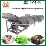 Máquina automática elétrica da arruela da limpeza vegetal