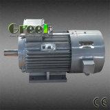 150kw un CA di 3 fasi a bassa velocità/generatore a magnete permanente sincrono di RPM, vento/acqua/idro potere