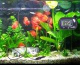 Termometro del serbatoio di pesci di temperatura dell'acqua del termometro dell'acquario dell'affissione a cristalli liquidi