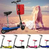 China-Hersteller des elektrischen Fahrrades