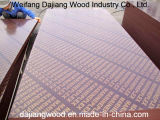 1220mm*2440mm Two Times Pressed Plywood with Black/Brown Film for Construction