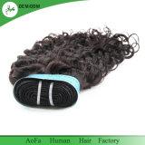 工場供給の元のバージンのRemyの毛の拡張インドのカーリーヘアー
