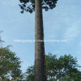Высокомарочная сталь гальванизировала закамуфлированную башню пальмы