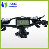 Nuevo diseño de fábrica 250W Ocultos batería de la bici eléctrica de grasa